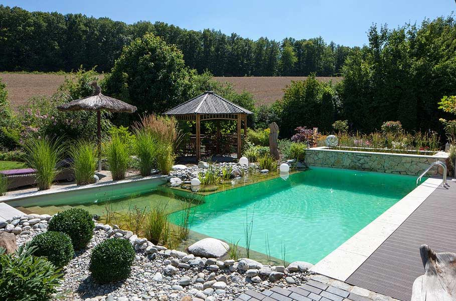 naturpools die biologische alternative zum klassischen pool. Black Bedroom Furniture Sets. Home Design Ideas